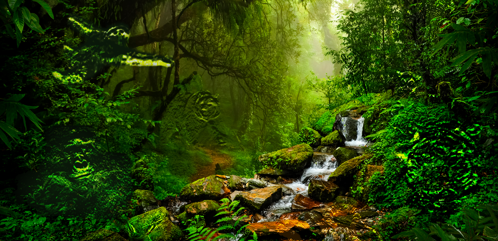 https://ngiatlantic.eu/sites/default/files/revslider/image/Rainforest%20NGIa%20webside%20slider.png
